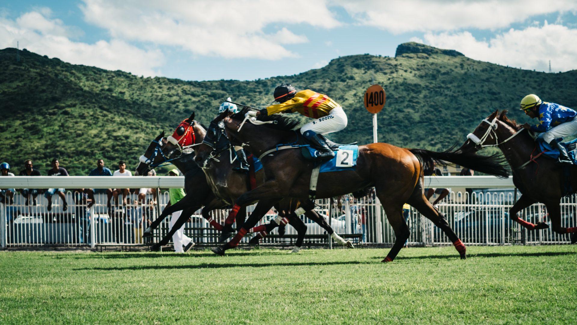 Equizouttherapie, Halotherapie voor paarden